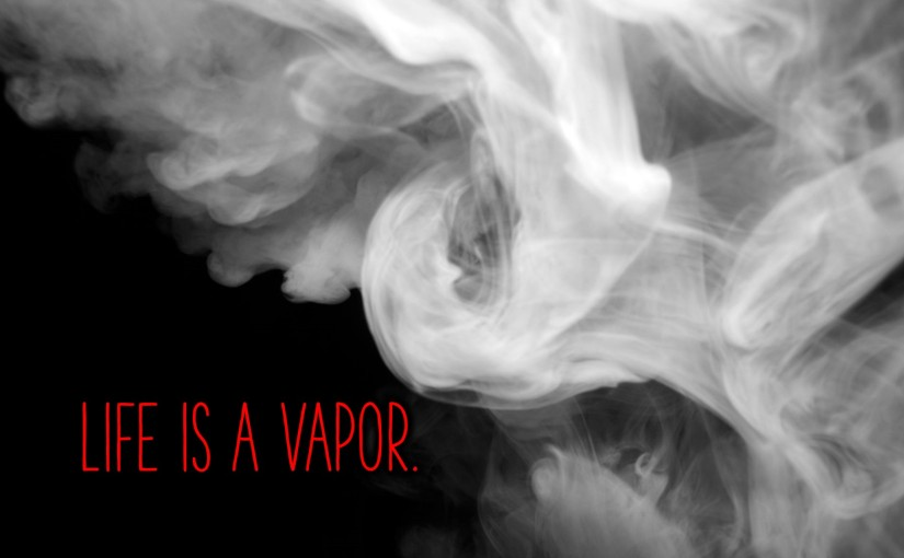 Life Is a Vapor (Days 15-21): Read through Leviticus, Numbers, and Acts